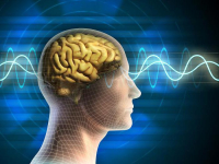 Ритмы мозга (для мужчин)