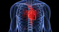 Исцеление-омоложение сердца при патологии строения