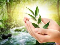 Божественное исцеление от рака молочной железы