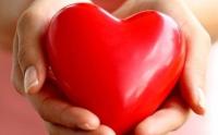 Я люблю свое сердце
