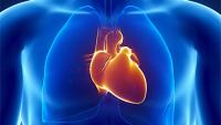 Настрой на снятие возбуждения сердца