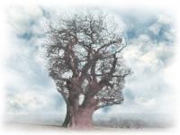 Непрерывное оздоровление психики и нервной системы
