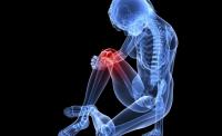 Оздоровление костей и суставов