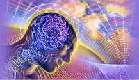 Ритмы мозга (для женщин)