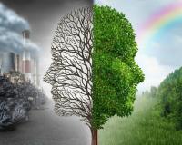 Защита сердечно-сосудистой системы от негативного влияния внешней среды, изменений климата и погоды