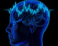 Оздоровление головного мозга. Развитие способностей