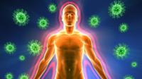 Божественное усиление иммунной системы
