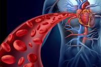 Божественное исцеление-омоложение кровеносных сосудов (для женщин)