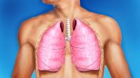 Оздоровление системы дыхания. Уничтожение инфекции